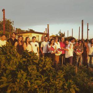 evento raccolta pomodorini