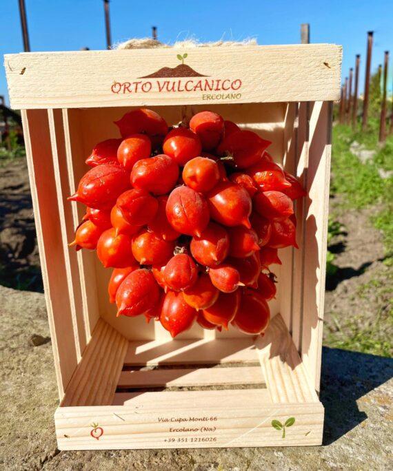 cassettina pomodoro